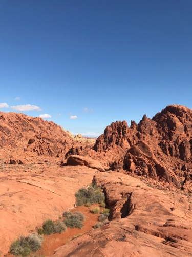 Valley of Fire beauty